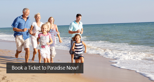 Book a Ticket to Paradise Now!